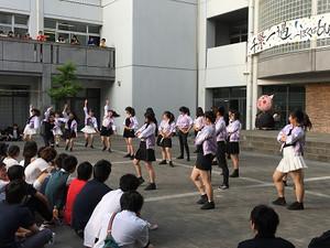 Photo_37